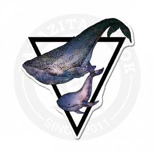 кит и треугольник<br>