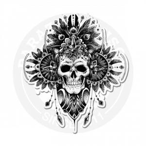 Skull Beauty<br>