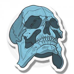 Синий череп<br>