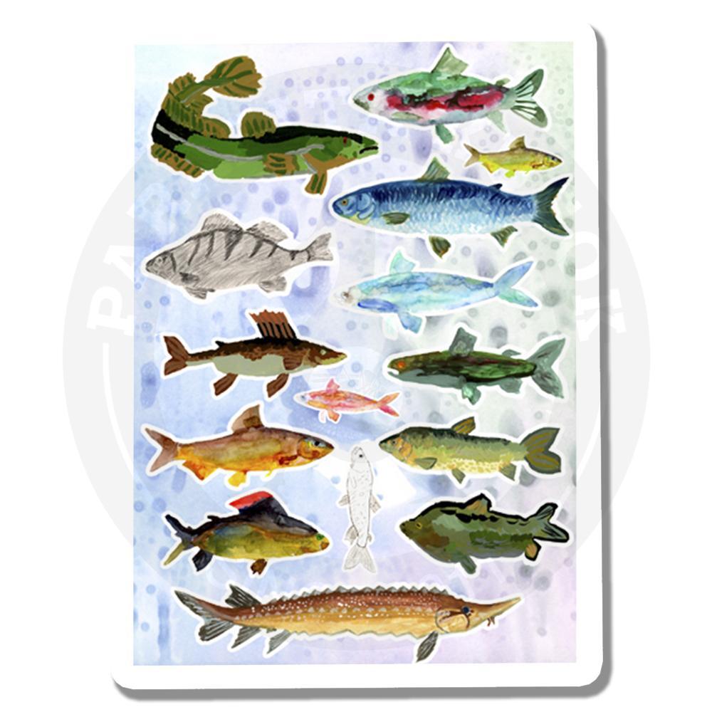 Речные рыбы Сибири<br>