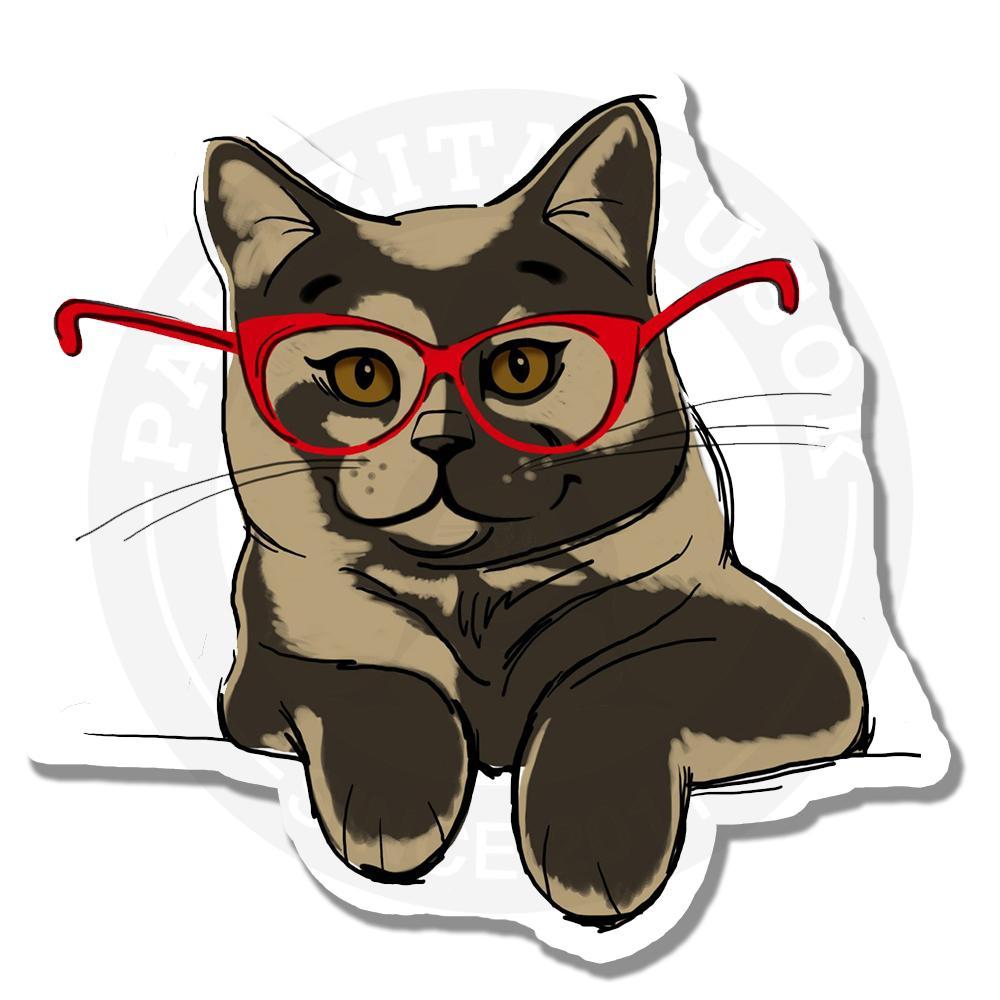 Кот в красных очках<br>