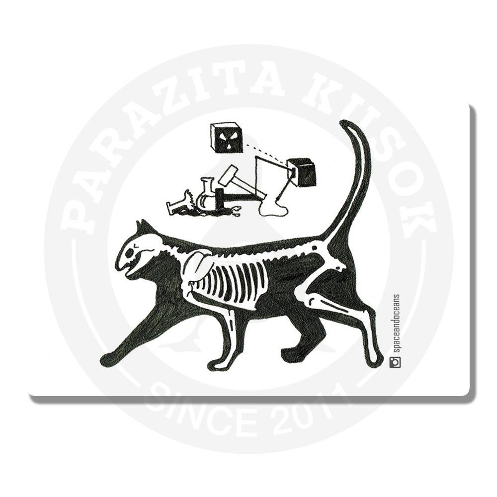 Кот Шредингера<br>