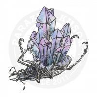 кристаллы в жуке<br>