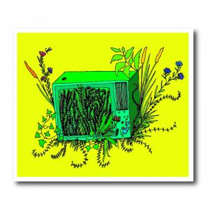Телевизор в котором проросли цветы<br>
