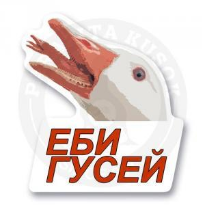 Стикер ЕБИ ГУСЕЙ<br>