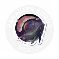 киты в космосе<br>