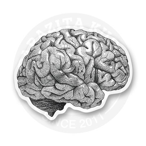 Мозги<br>