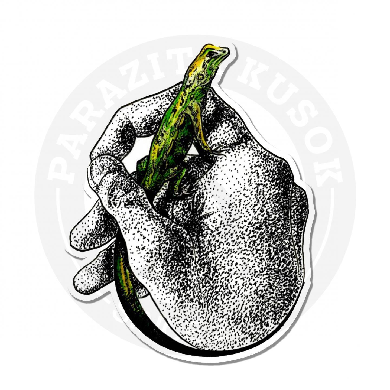 Зеленая ящерица в руке<br>